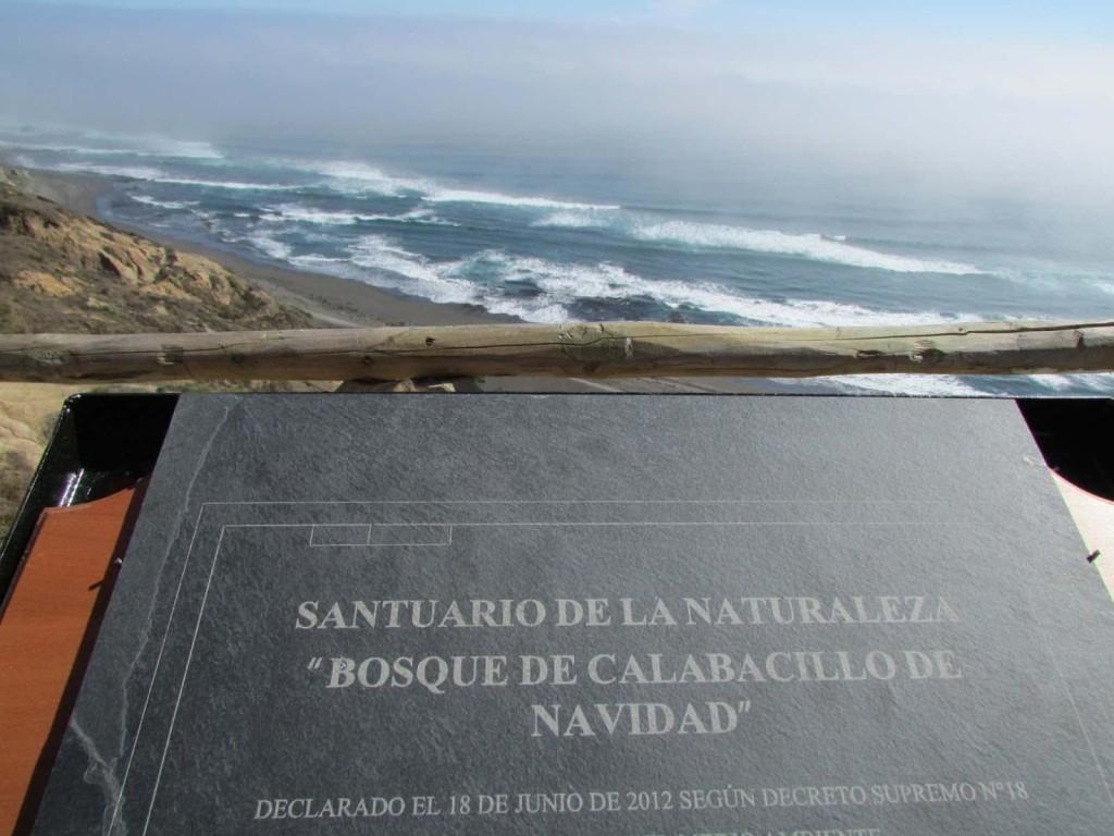 Placa conmemorativa que celebra la declaratoria presidencial de Santuario Marino