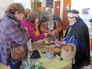 representantes de las Naciones Unidas y la Unión Europea intercambiando con sus pares de las comunidades Mapuches